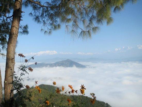 Bandipur Mountain Resort: View