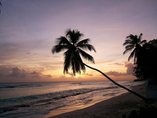 Blue Orchids Beach Hotel : Final de Tarde