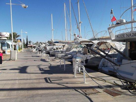 Saphir Palace & Spa: marina