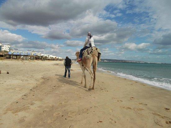 Saphir Palace & Spa: beach