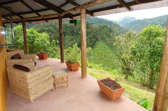Gorilla Valley Lodge: Geweldig uitzicht
