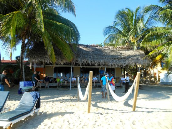 Parrot Cove Lodge: Hammocks and Love on the Rocks