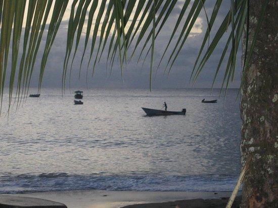 Castara Bliss: Paradise