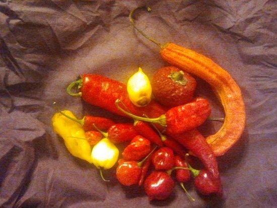 Il Poggio: peperoncini