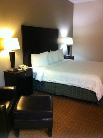 BEST WESTERN PLUS O'Hare International South Hotel: Bottom floor single with king bed