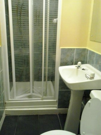 Avondale House : bagno