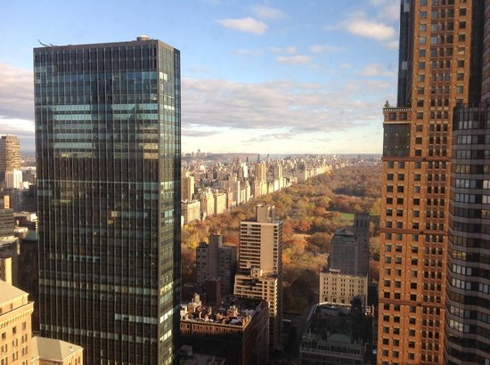 The London NYC: Central Park view from 5101