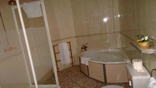Best Western Plus Burlington Hotel: Bathroom