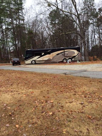 Stone Mountain Family Campground : One of the big boys.