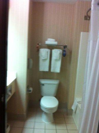 Comfort Inn & Suites: Clean bathroom.