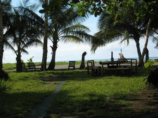 Dos Palmas Beach Cabinas: Blick von der Terrasse
