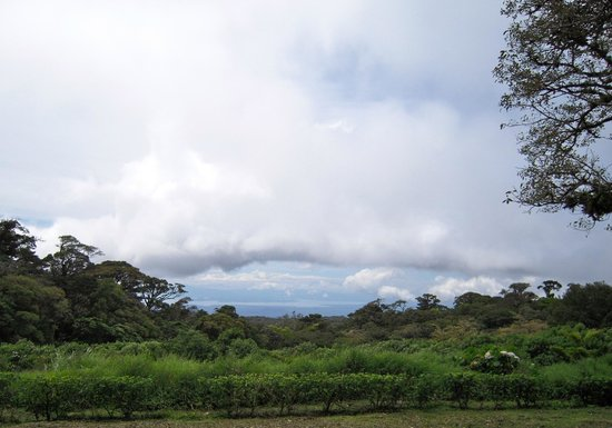Pasion Costa Rica: View to Nicoya Peninsula