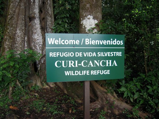 Pasion Costa Rica: National park entrance