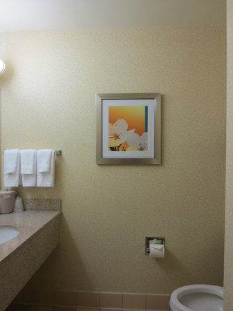 Fairfield Inn & Suites Richmond Short Pump/I-64: Room 323