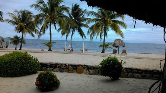 Jaguar Reef Lodge & Spa: View from our Beachfront Cabana.