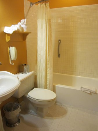 Admiral Fell Inn : bathroom
