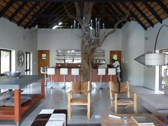 Moditlo River Lodge vue du bar