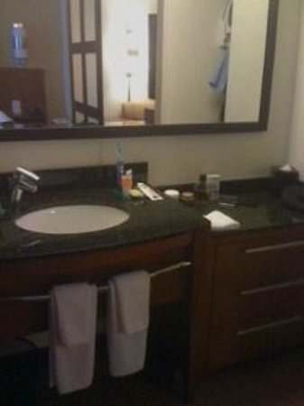 Hyatt Place Riverside Downtown: Separate sink area from powder room and shower