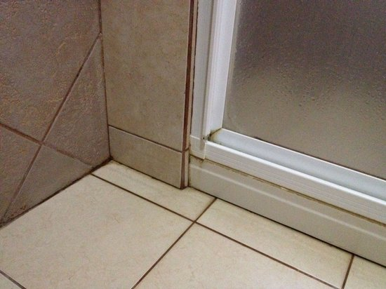 Hotel Kokoro Arenal: Bathroom floors-- not exactly clean- moldy