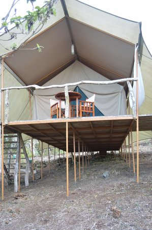 Galapagos Safari Camp: My luxurious safari tent, Tent 2