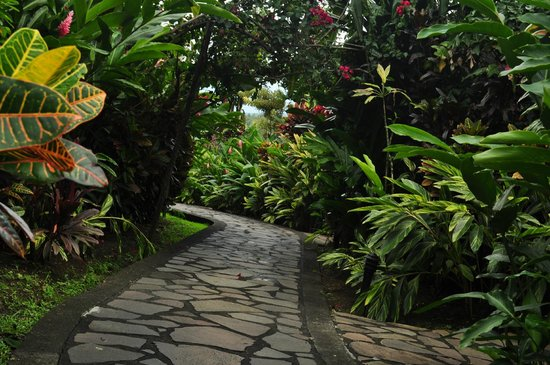 Nayara Hotel, Spa & Gardens: pathway to our room