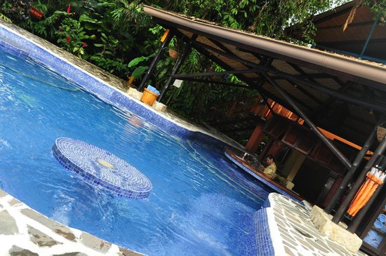 Nayara Hotel, Spa & Gardens: swim up bar