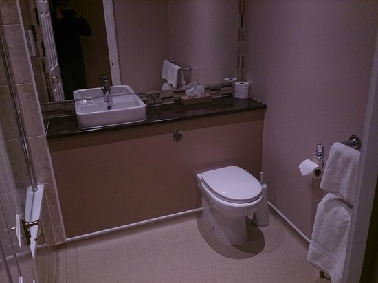 The Old Wisteria Hotel: Hotel room's bathroom