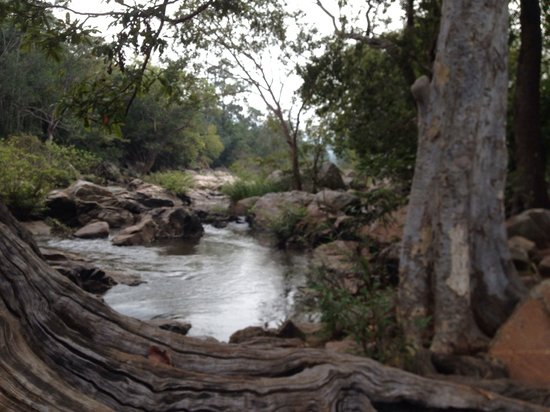 Chinnar Wildlife Sanctuary: River
