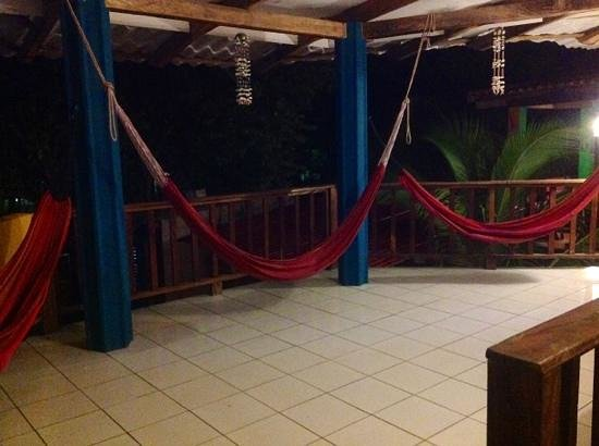 LayBack Hostel: layback hammocks