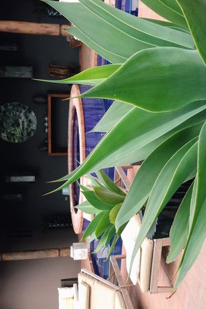 Mil Flores Luxury Design Hotel: hermoso.