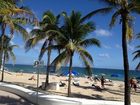 Much Nicer Than South Beach Miami