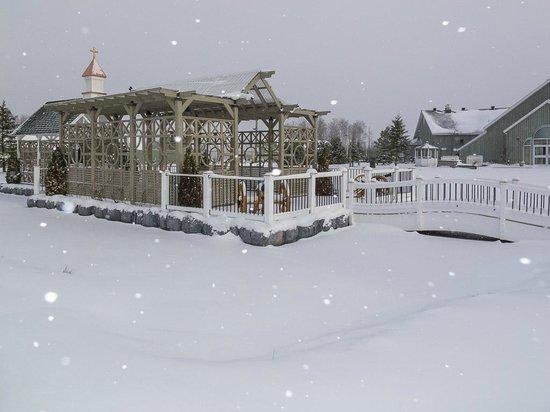 Cedar Meadows Resort & Spa: Outdoor facilities