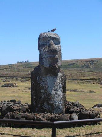 Ahu Tongariki: moai