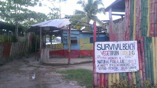 Survival Beach Restaurant: Ingresso...panoramica generale.