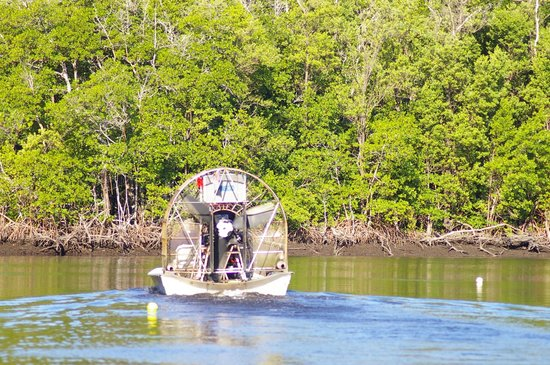 Everglades City Airboat Tours: Airboat in the water