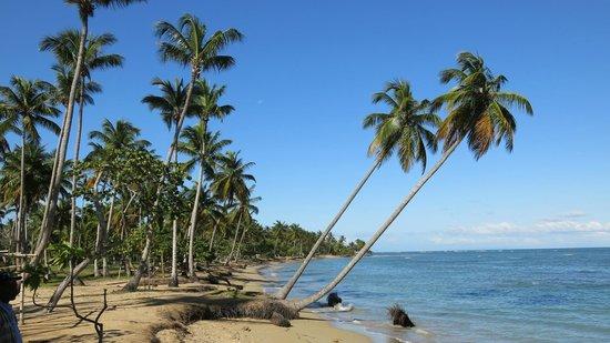 Grand Bahia Principe El Portillo: Playas agrestes