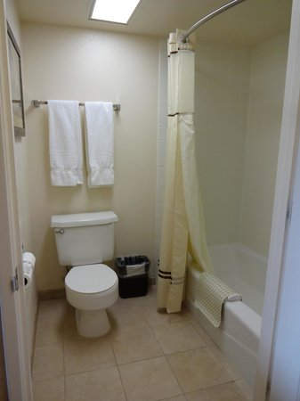 Castle Inn and Suites : Bathroom