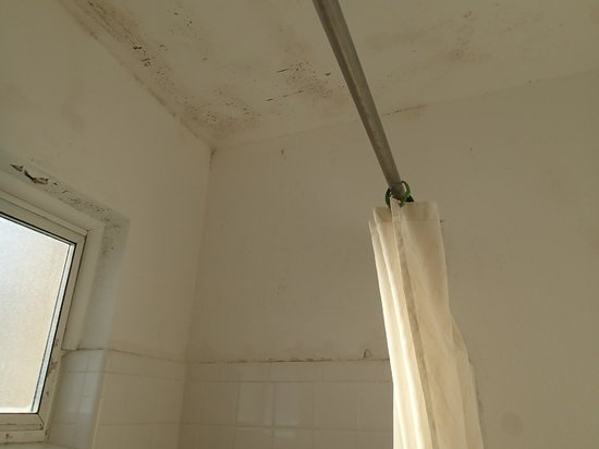 Ritz Inn: More mold in the bathroom.