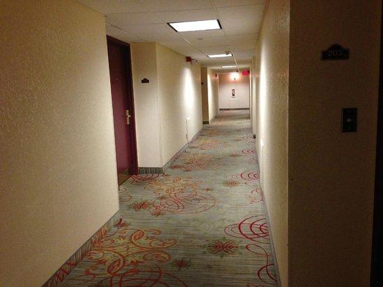 Holiday Inn Express El Paso - Central: Hallway