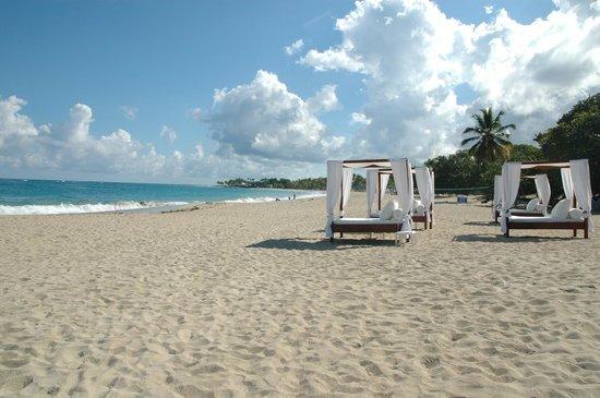 Blue JackTar: Hamacas área de la playa