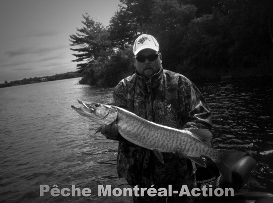 ‪Guides de Peche Montreal-Action‬