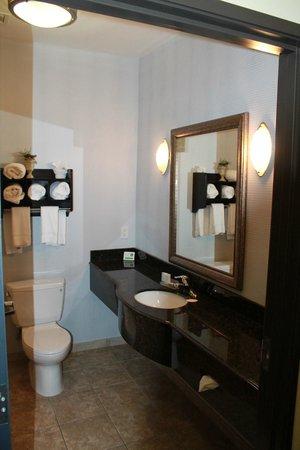 Sleep Inn & Suites West Medical Center: Bathroom Layout