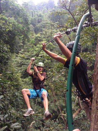 Flight of the Gibbon: 1