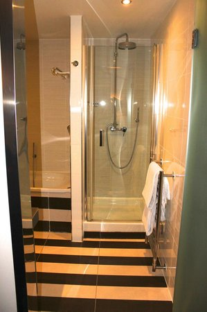 The House Hotel: Shower