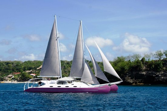 Aneecha Sailing Catamaran