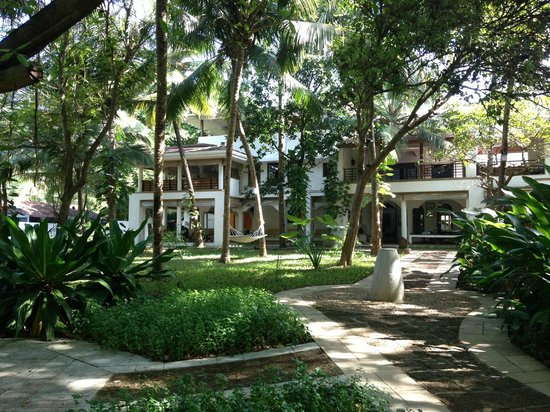 Aashyana Lakhanpal: Looking at the main house from the garden