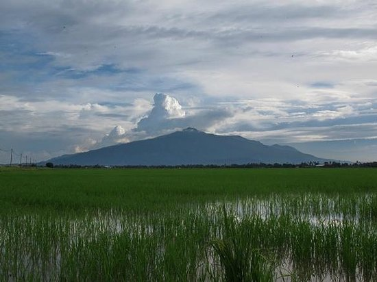 Gurun, Малайзия: view from the coastal plains - Kedah Peak