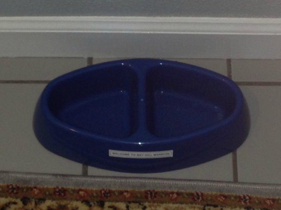 Bay Hill Mansion Bed and Breakfast: Welcome Bowl