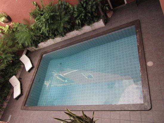 Hotel Reforma: pool