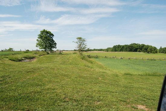 Antietam National Battlefield : The Cornfield